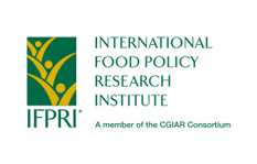International Food Policy Research Institute Logo, small green square with three flowers sprouting upward